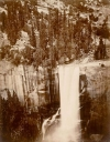 Sweeping scene: Pictures of Yosemite Valley, such as this photograph of Vernal Fall taken in 1872, are among the varied pursuits of Muybridge's illustrious career.